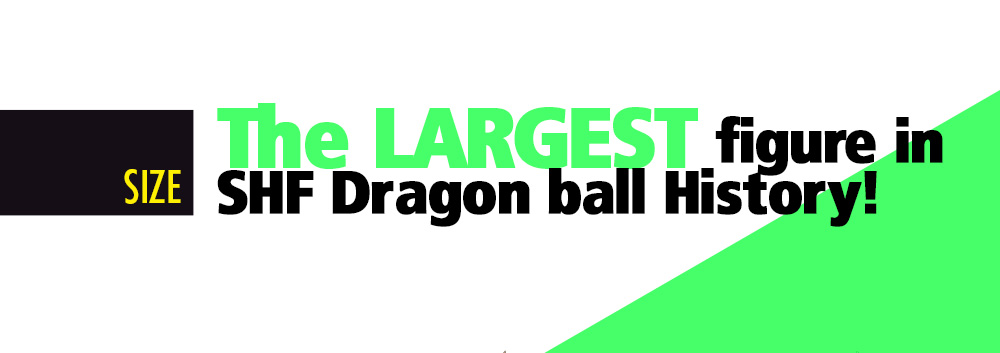 SIZE:The LARGEST figure in SHF Dragon ball History!